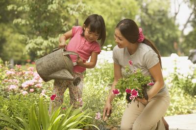 怎样给花浇水 花浇水是浇花还是浇土