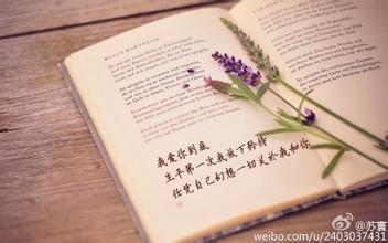 第28節:寫給未來自己的一封信(2)