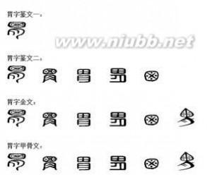 汉字的演变过程 胃[汉字] 胃[汉字]-汉字解释,胃[汉字]-汉字演变
