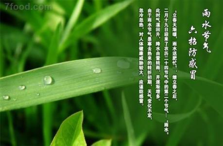 2017雨水节气 2017年雨水是几月几日 雨水节气知识大全