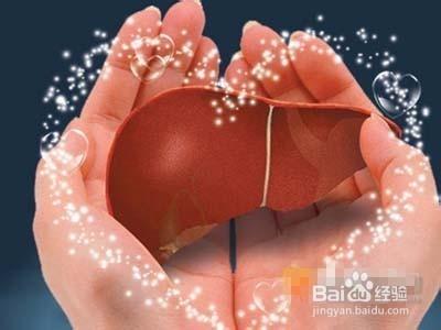 肝脏的养生保健课件 肝的养生方法