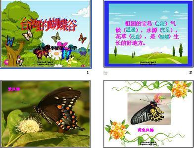 台湾的蝴蝶谷评课稿 台湾的蝴蝶谷说课稿
